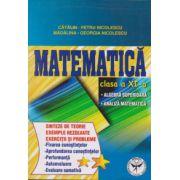 Matematica clasa a X-a. Algebra superioara, analiza matematica