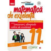 Matematica de excelenta. Pentru concursuri, olimpiade si centrele de excelenta, clasa a XI-a. Volumul I - Algebra