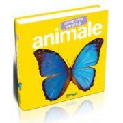 Animale - Prima mea carticica
