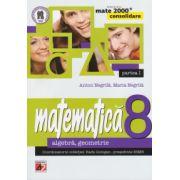 Matematica 2000 CONSOLIDARE 2014-2015 algebra, geometrie clasa a VIII-a partea I