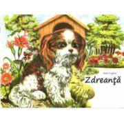 Zdreanta, carte ilustrata color