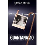 Guantanamo (Stefan Mitroi)