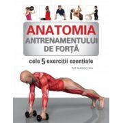 Anatomia antrenamentului de forta - Cele 5 exercitii esentiale