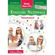 Evaluare Nationala 2015. Matematica pentru, clasa a IV-a (Elena Stefanescu)