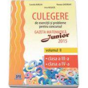 Culegere de exercitii si probleme pentru concursul Gazeta Matematica Junior 2015 volumul II, clasa a III-a, clasa a IV-a (Irina Negoita)