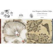 Gradina dintre ape (Ana Wagner, Stefan Caltia)
