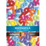 Matematica. Culegere pentru clasa a II-a (Simona Brie)