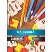 Matematica. Culegere pentru clasa I (Simona Brie)