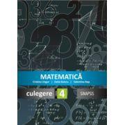 Matematica. Culegere pentru clasa a IV-a (Delia Boieru)