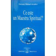 Ce este un Maestru Spiritual?