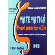 Matematica manual pentru clasa a XI-a. Trunchi comun + curriculum diferentiat, M1