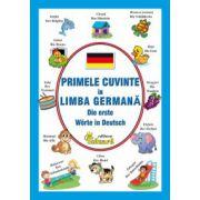 Primele cuvinte in limba germana (Die ersten Worter auf Deutsch)
