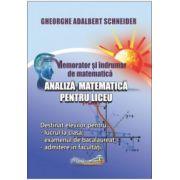 Memorator si indrumar de matematica analiza matematica pentru liceu (Gheorghe-Adalbert Schneider)