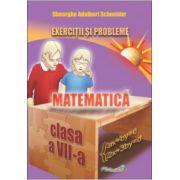 Matematica, exercitii si probleme pentru clasa a VII-a