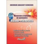 Memorator si indrumar de matematica algebra pentru liceu (Gheorghe-Adalbert Schneider)