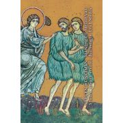 Maniheul medieval. Studiu asupra ereziei dualiste in Evul Mediu