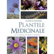 Plantele medicinale, de la remedii naturiste la medicina