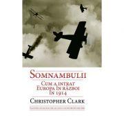 Somnambulii - Cum a intrat Europa in razboi in 1914