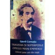 Tragedia si suferintele omului Mihai Eminescu