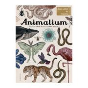 Animalium. Bun venit la muzeu. Intrarea libera