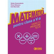 Matematica pentru clasa a V-a. Exercitii, probleme, teste