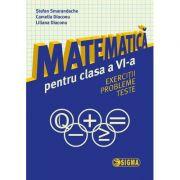 Matematica pentru clasa a VI-a. Exercitii, probleme, teste