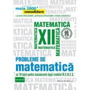 Probleme de matematica pentru clasa a XII-a. Consolidare (Colectia, mate 2000+)