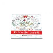 Culorile iernii - 28 de fise de colorat detasabile