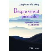 Despre sensul piedicilor (Jaap van de Weg)