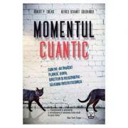 Momentul cuantic