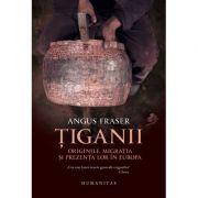 Tiganii - Originile, migratia si prezenta lor in Europa