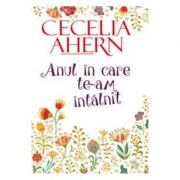 Anul in care te-am intalnit (Cecelia Ahern)
