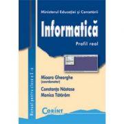 Informatica / profil real - Manual pentru clasa a X-a (Mioara Gheorghe)