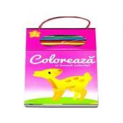 Coloreaza si invata culorile! Numarul 2 (Contine 4 creioane colorate)