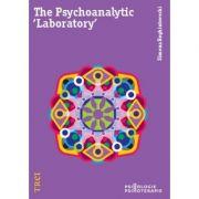 The Psychoanalytic Laboratory - Simona Reghintovschi