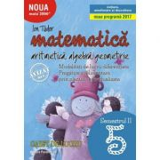 Matematica 2000. Aritmetica, algebra, geometrie. (Initiere, ameliorare si dezvoltare) Caiet de lucru, pentru clasa a V-a. Semestrul II - Ion Tudor