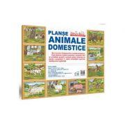 Animale domestice - MAPA - setul contine 10 planse format A3
