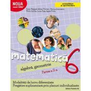Matematica 2000. Algebra, geometrie. (Consolidare si aprofundare) Caiet de lucru, pentru clasa a VI-a. Partea a II-a
