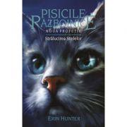 Pisicile Razboinice, volumul 10 - Stralucirea stelelor