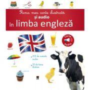 Prima mea carte ilustrata si audio in limba engleza (Larousse)