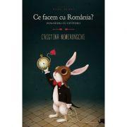 Ce facem cu Romania? Dialoguri cu cititorii - Cristina Nemerovschi
