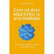 Cum sa devii maestru in arta meditatiei - David Fontana