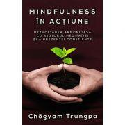 Mindfulness in actiune - Dezvoltarea armonioasa cu ajutorul meditatiei si a prezentei constiente