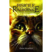 Pisicile Razboinice, volumul 11 - Amurg