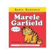 Marele Garfield - Prima carte