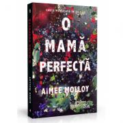 O mama perfecta - Aimee Molloy