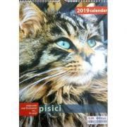 Calendar 2019 pisici