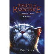 Pisicile Razboinice, volumul 13 - Puterea celor trei