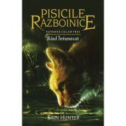 Pisicile Razboinice, volumul 14. Puterea celor trei - Raul intunecat
