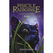 Pisicile Războinice, volumul 15 - Puterea celor trei. Exilul